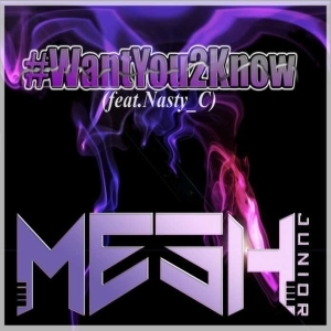 Mesh Junior - Want You To Know ft Nasty C